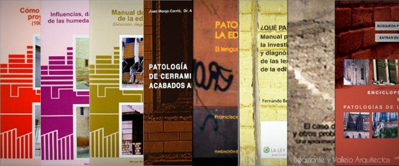 ByV-Arquitectos-Mejores-libros-patologias-edificacion